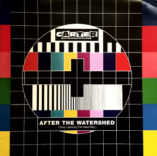 "Carter The Unstoppable Sex Machine - After The Watershed (Early Learning The Hard Way) (12"") (EX/EX)"